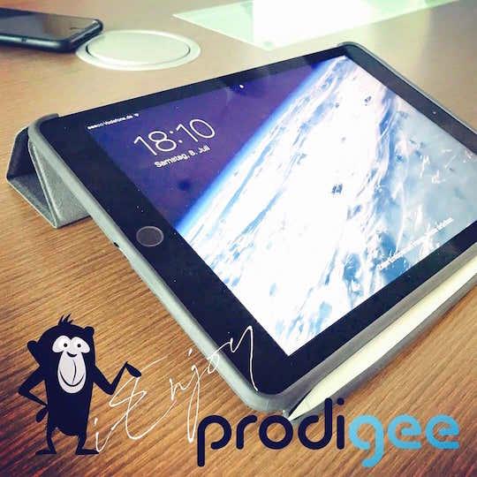 Prodigee Expert für iPad Pro